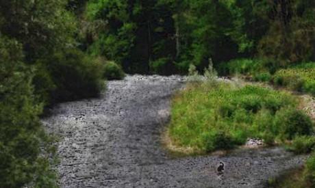Fluss_RainerSturm_pixelio