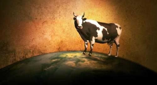 Für eine bessere Welt: Donnerstag ist Veggie-Tag