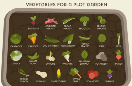 Infografik: A Gardener´s Cheat Sheet