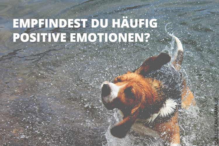 Selbsttest: Wie glücklich bist Du?