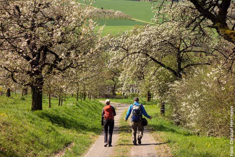 Slow Travel: Interview mit Christof Herrmann