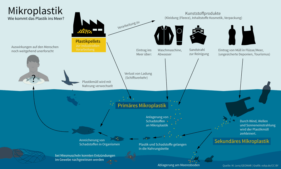 Infografik: Mikroplastik im Meer