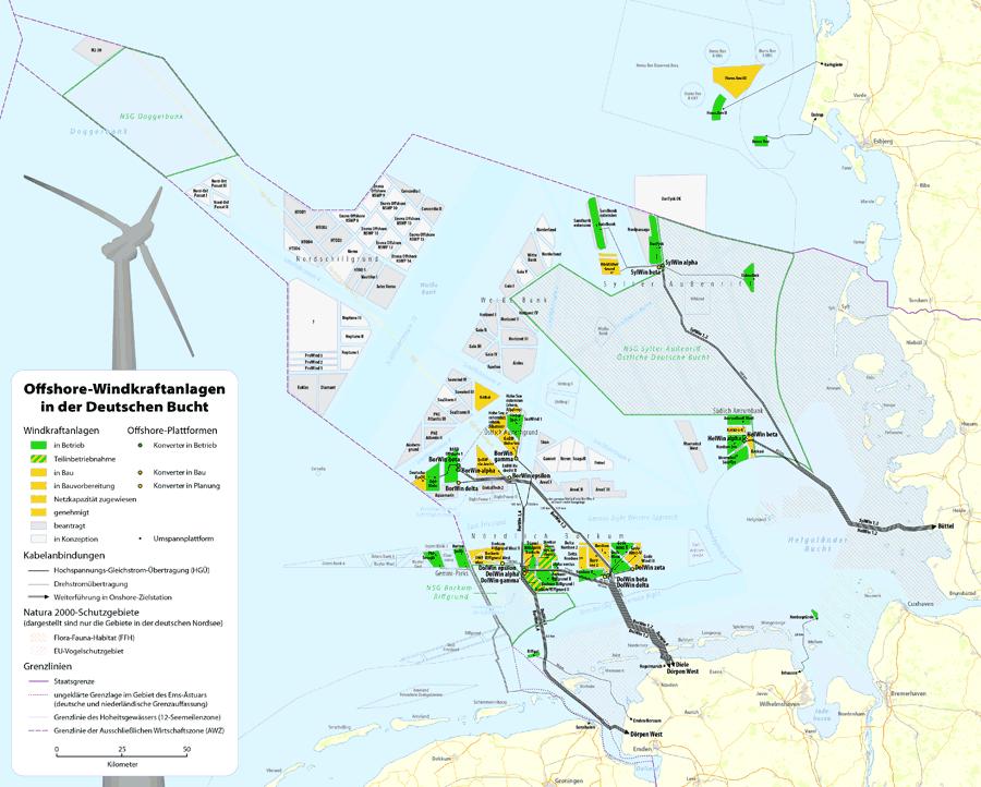 Offshore-Windparks sorgen für Lärmbelästigung im Meer